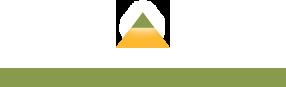 New Hampshire logo